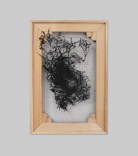 Tuğçe Diri, Bir Başka Dünya, Simbiyotik, 2018